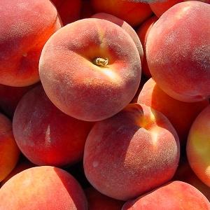Персик Сувенир (узкопирамидальный)