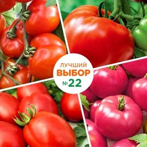 Крупноплодные сорта томата для открытого грунта