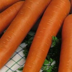Морковь Фея (серия Заморозь)