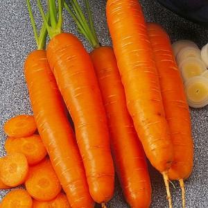 Морковь Берлин
