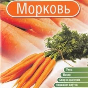 Брошюра Морковь