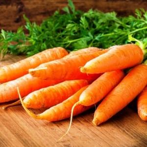 Морковь Аскания F1 столовая