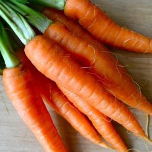 Морковь Золотая осень (серия Заморозь)