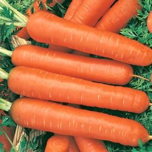 Морковь гранулир. Зимний цукат