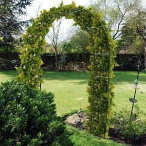 Пергола садовая