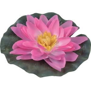 Водная лилия, розовая