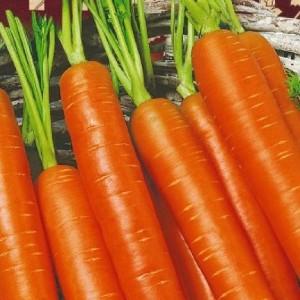 Морковь Принцесса (серия Ленивый огород)