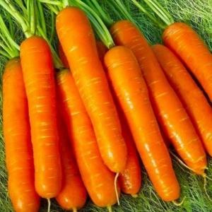 Морковь Фея (сер. Заморозь)