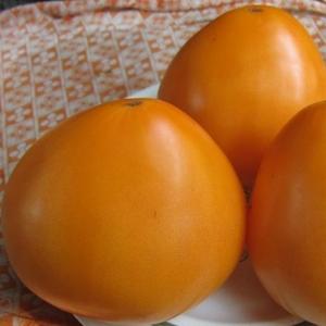 Томат Оранжевое чудо F1