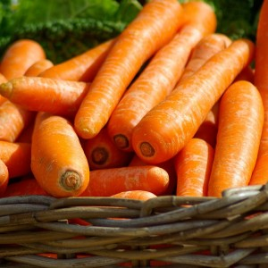 Морковь Деликатесная (серия Заморозь)