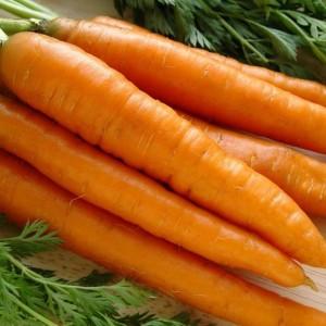 Морковь Добрыня (серия Русский вкус)
