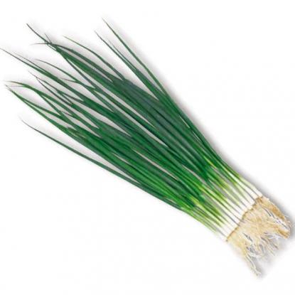 Лук батун Тотем на зелень
