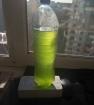 Хлорелла зеленая