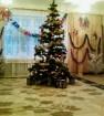 Ель новогодняя