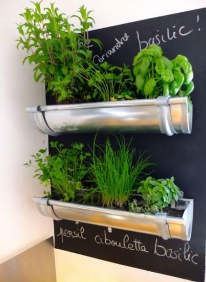 Diy Indoor Herb Garden Ideas My Garden