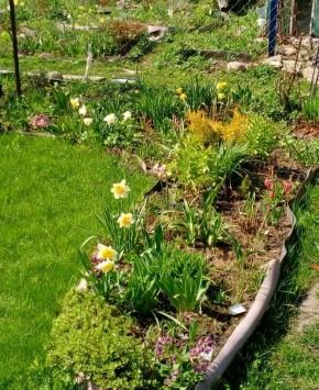 Ура, весна!!!